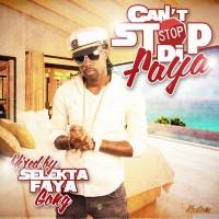 Selekta Faya Gong - Cant Stop Di Faya